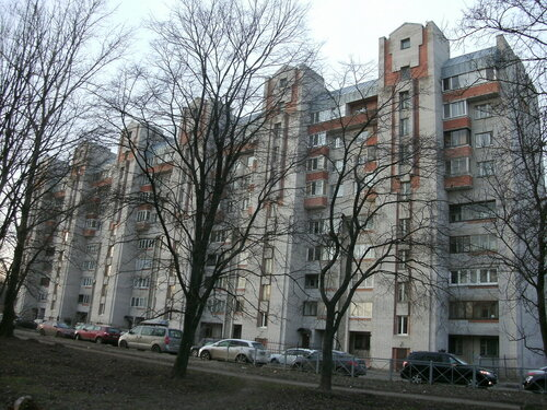 ул. Бабушкина 117к1