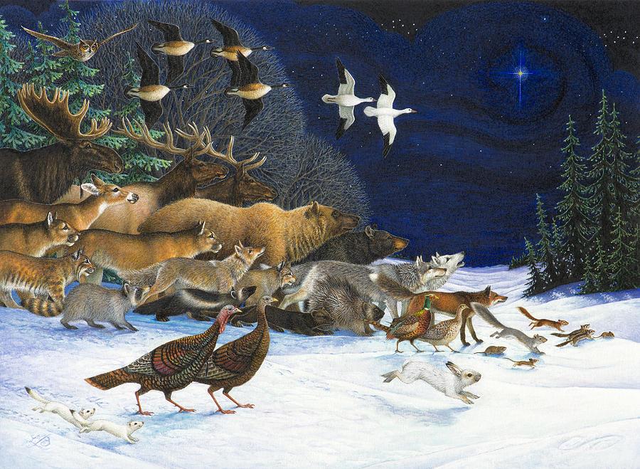 the-christmas-star-lynn-bywaters.jpg