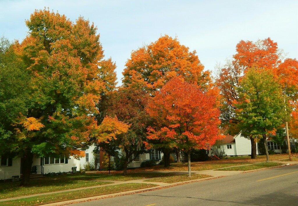 В нашем городе осень...