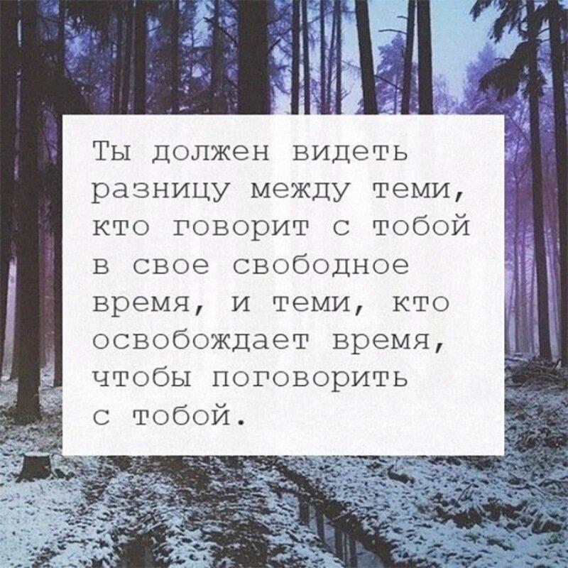 PZhv-w4jO0o.jpg