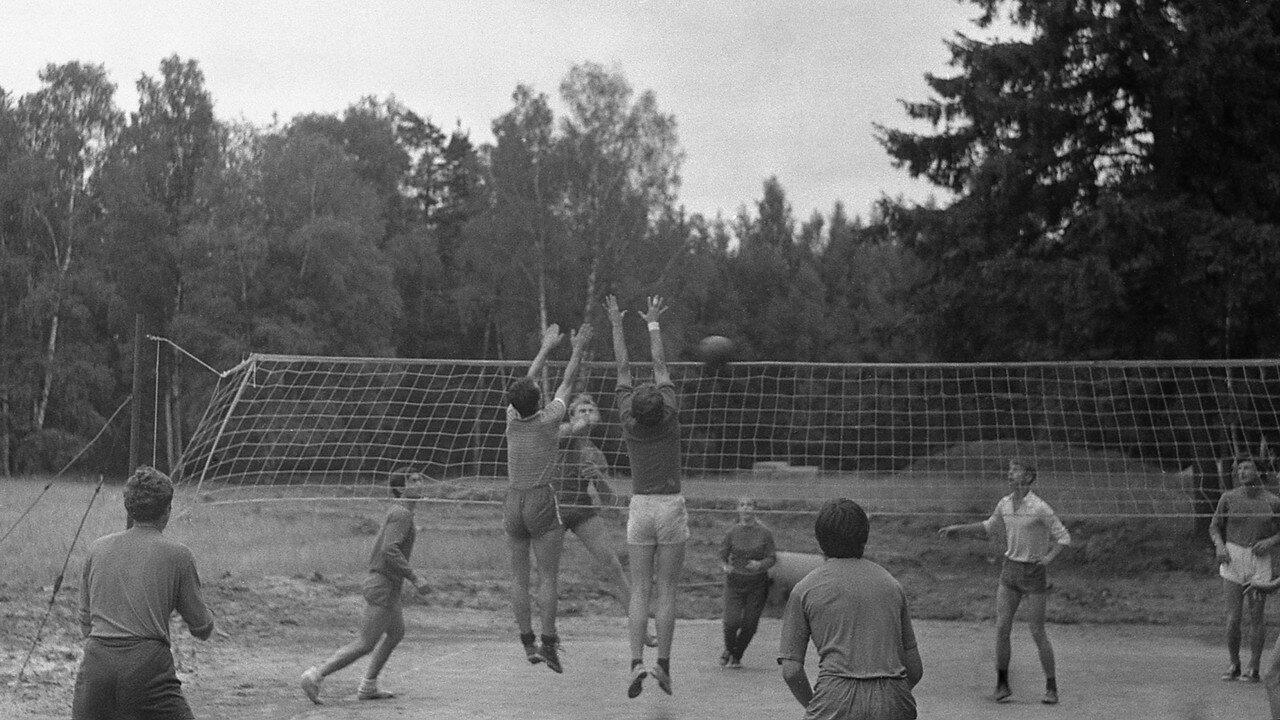 202. Волейбол