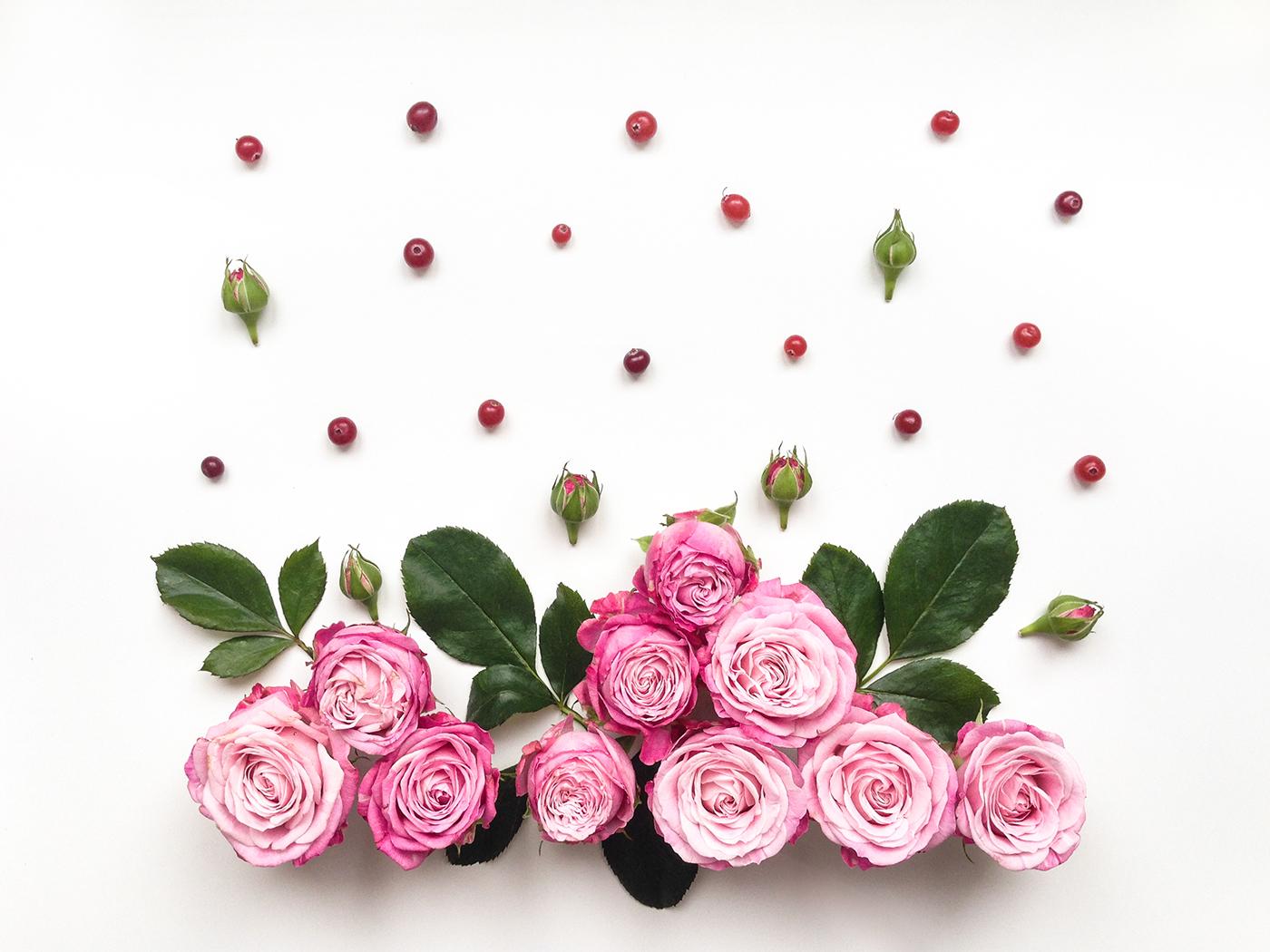 Кантемировская цветы