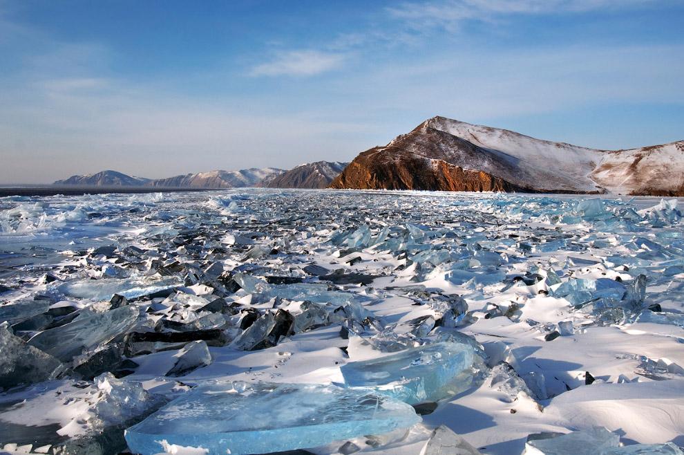 9. В Байкале обитает около 2600 видов и подвидов водных животных, более половины которых являют