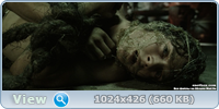 Властелин колец (Трилогия) (Расширенное издание) / The Lord of the Rings / 2001-2003 / BDRip (AVC)