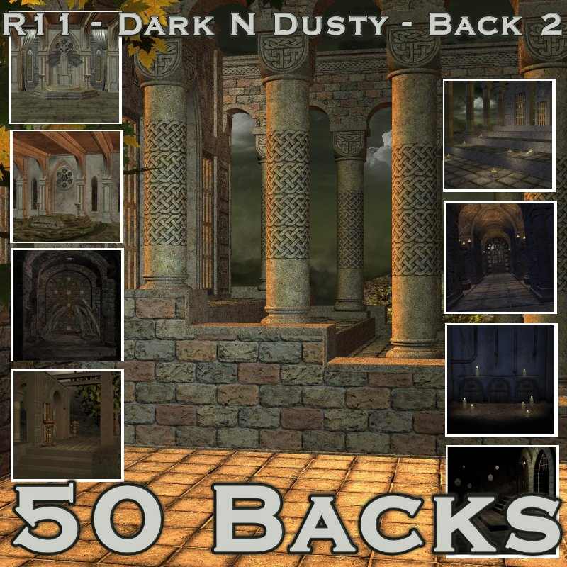 R11 - Dark N Dusty - Back 2.jpg