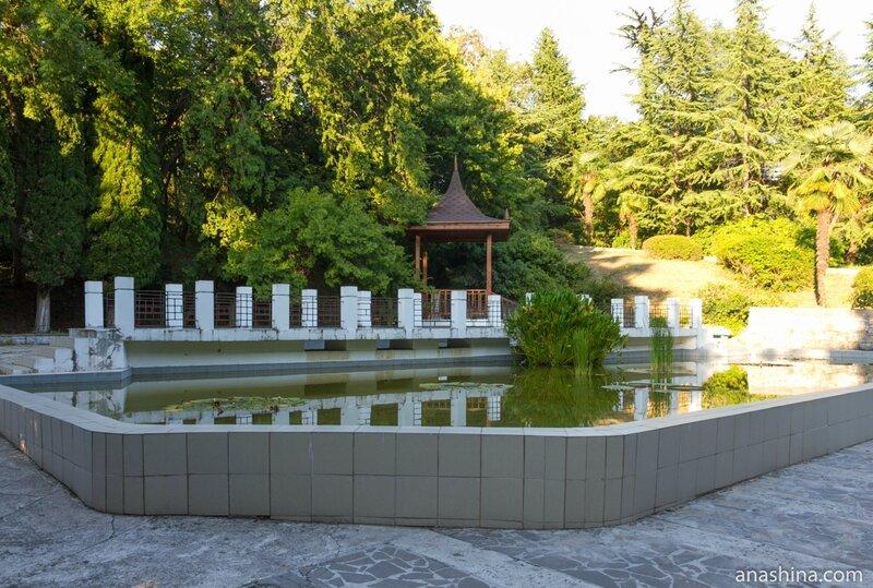 Китайский дворик, Сочинский дендрарий