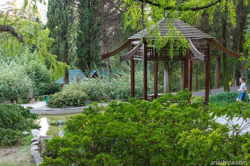 Японский садик, Сочинский дендрарий