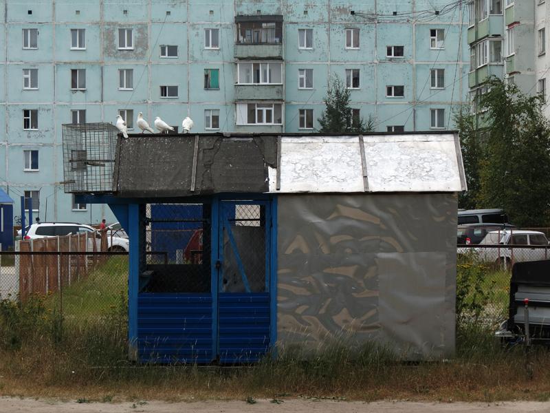СОГАЗ Ноябрьск Страховые компании Ноябрьска