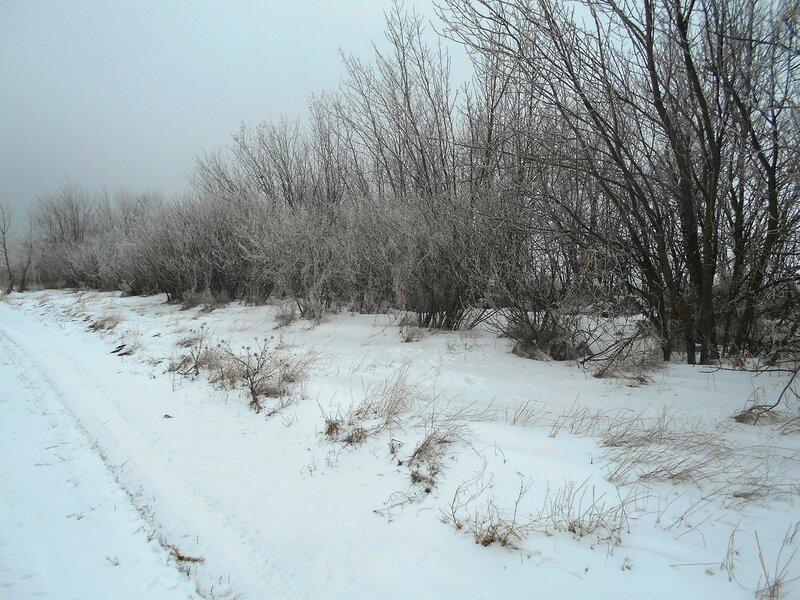 У леса, на опушке ... В походе декабрьском, снежно-туманном,