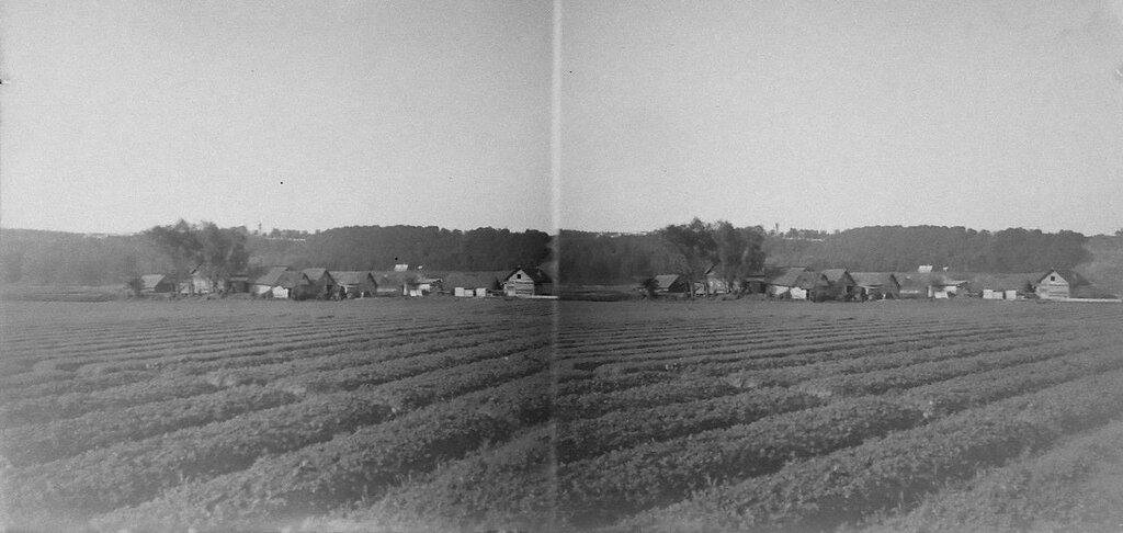 Лужники. 1903 год..jpg
