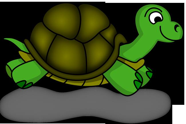 День Черепахи Картинки
