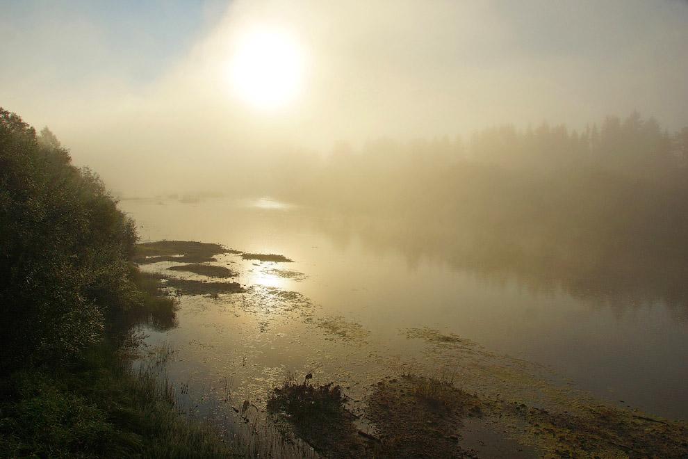 16. Это место создано для грибников, любителей охоты и рыбалки и для людей любящих природу. Поп