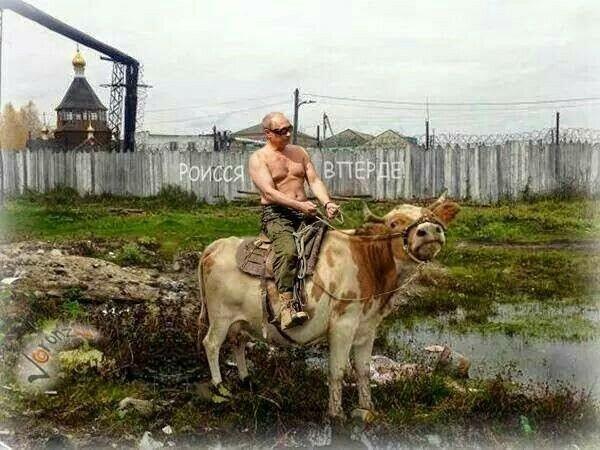 Россия вперед