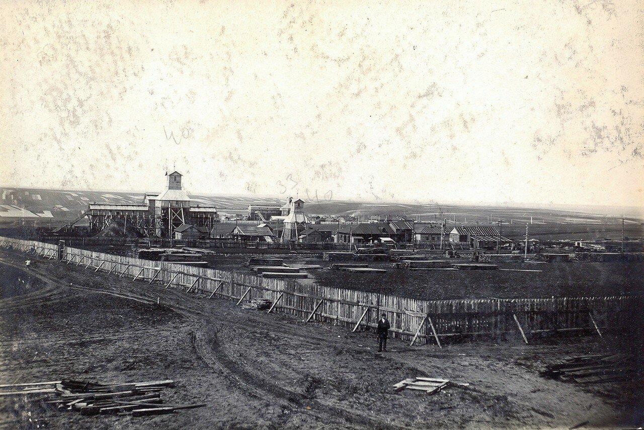 1929. Лесной двор Октябрьского Поля