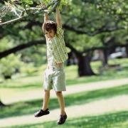 Мальчик на дереве