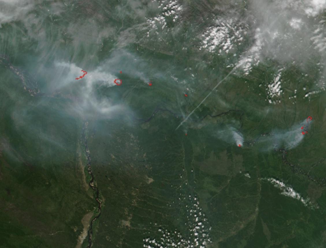 Неменее 208 тыс. гагоревшей тайги Иркутской области потушили дожди