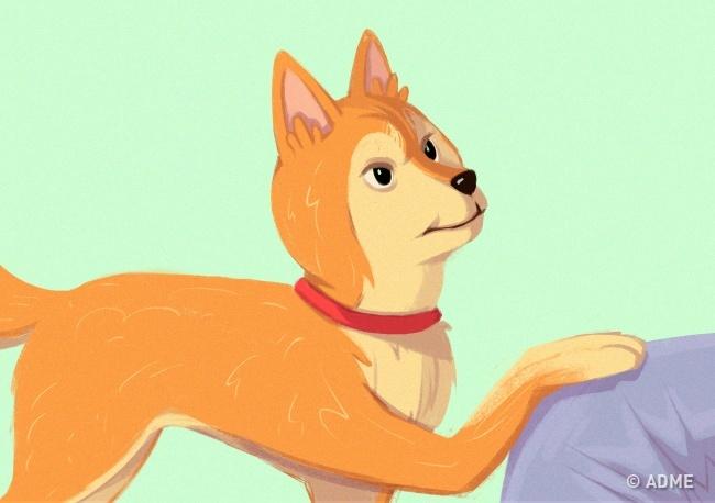 Если этот жест выполняется сдемонстративным видом— пес пытается доминировать. Дрессировщики рекоме