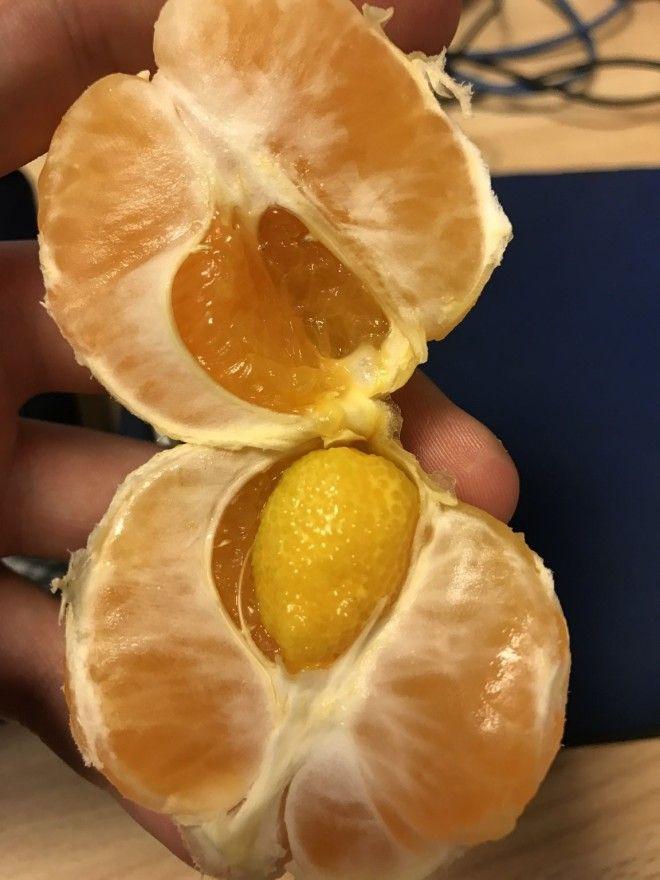 16. А вот мандарин в мандарине.