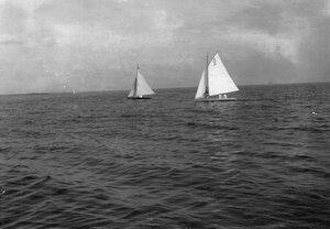 Яхты А10 и А5 и на дистанции гонок по Финскому заливу