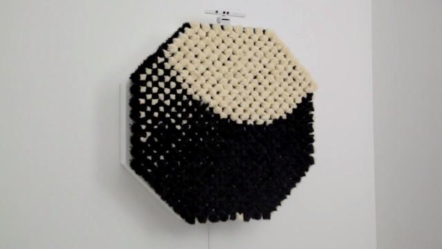 Interactive Fur Mirror Sculpture (6 pics)