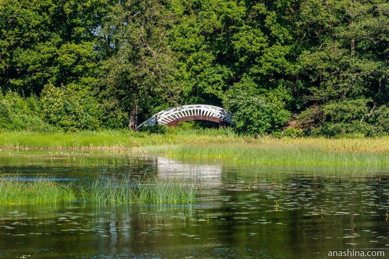 Китайский мостик, парк Монрепо, Выборг
