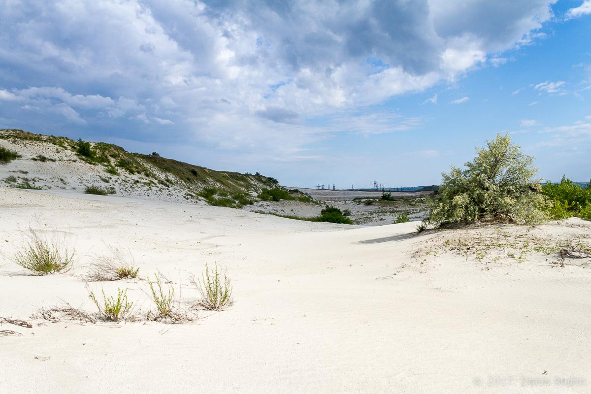 камышинский песчаный карьер фото 2