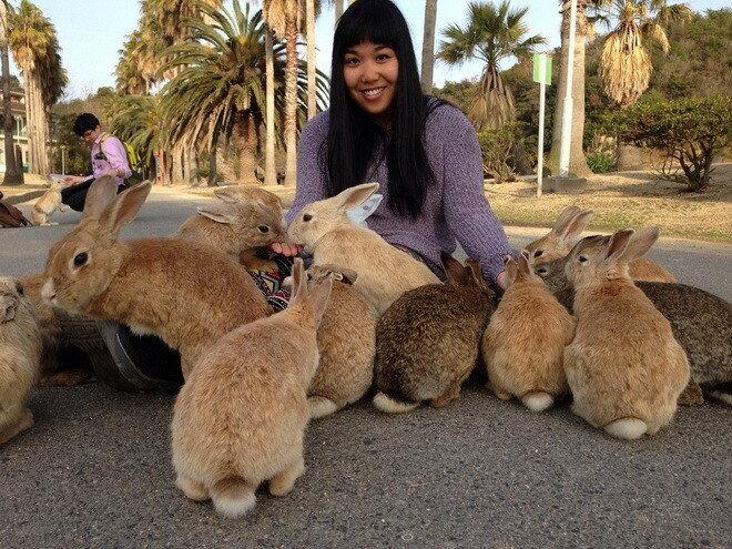 Остров Окуносима. Япония