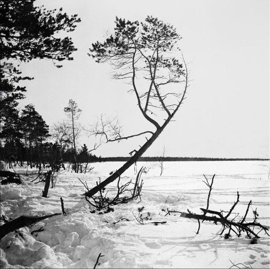 143. Зимний пейзаж Нарел-Ту с северной стороны