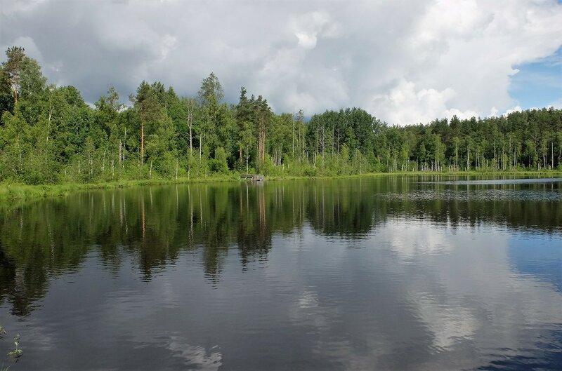 Дачное озеро и хатки бобров...