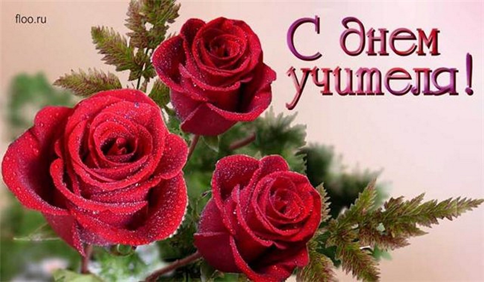 Открытки. День Учителя!  Красные розы открытки фото рисунки картинки поздравления