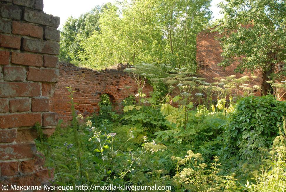 Развалины конюшни Трубецких