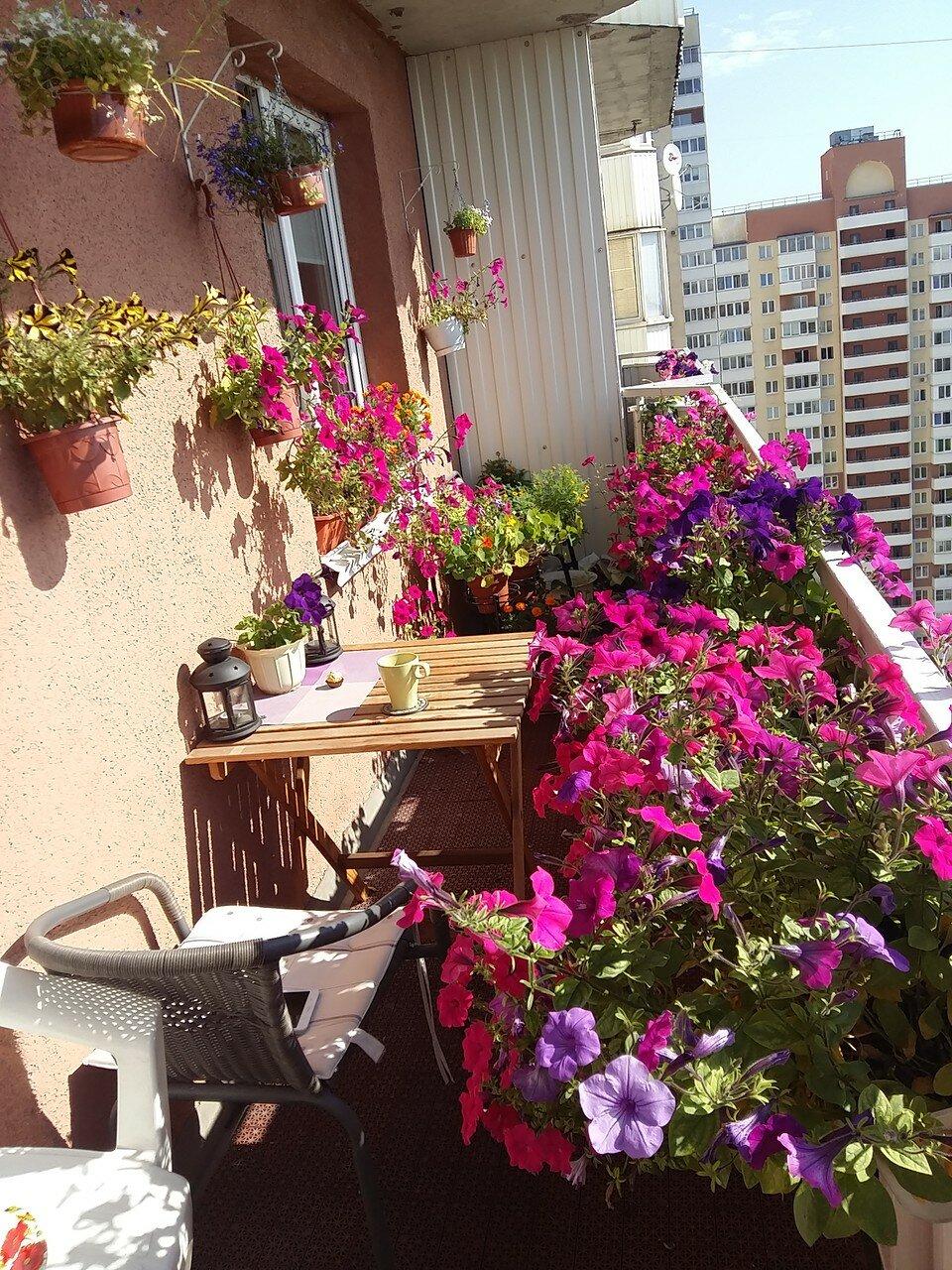 Балкон - за облаками всегда солнце!.