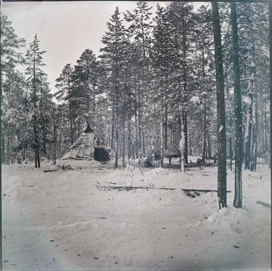 22. Самоедская хижина в лесу