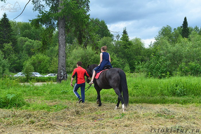 конные_прогулки_konnye_progulki