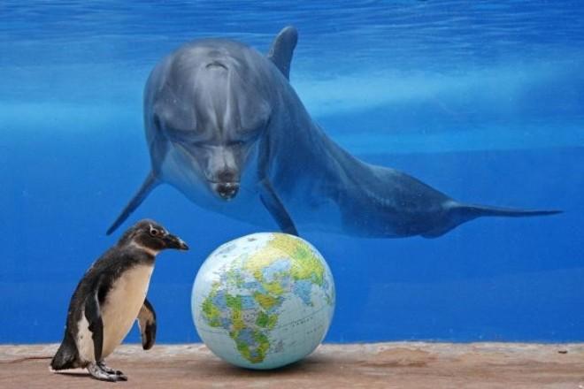 25 сентября Всемирный день моря. Поздравляю вас