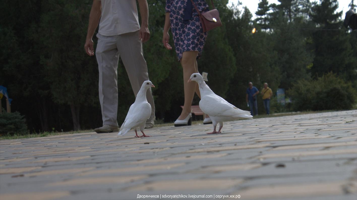 Двое - Волгоград - парк Баку - 17-09-2017