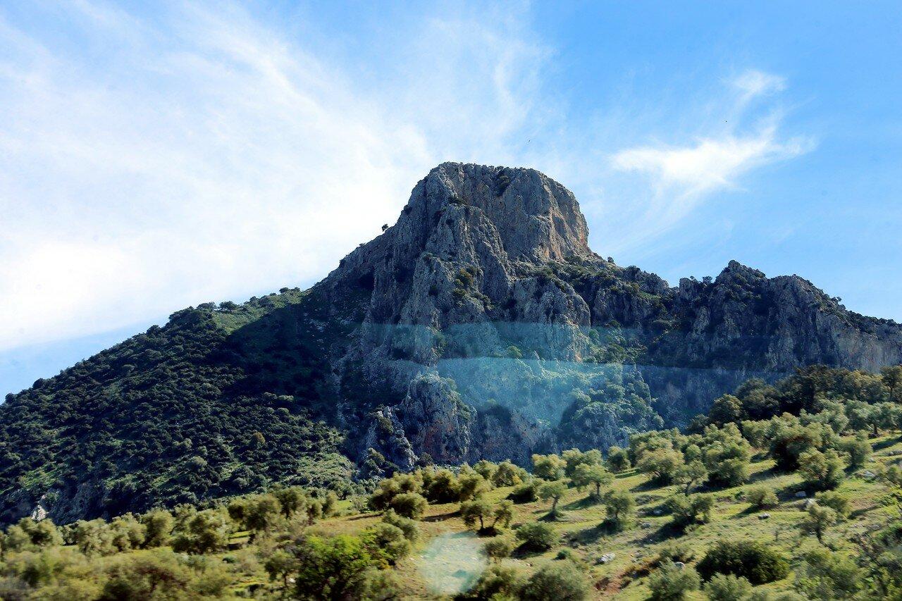 Jerez-Arcos, Andalucia landscape