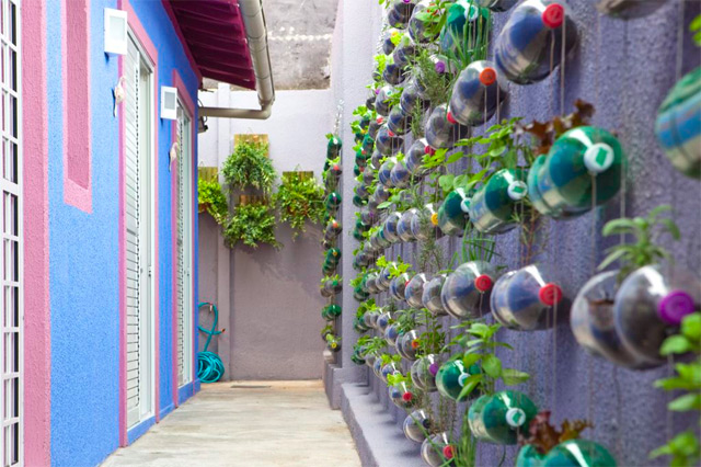 Urban Vertical Garden Built From Hundreds of Recycled Soda Bottles