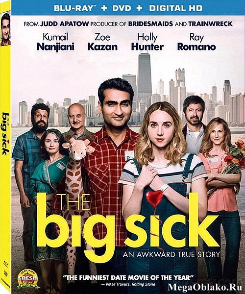 Любовь – болезнь / The Big Sick (2017/BDRip/HDRip)