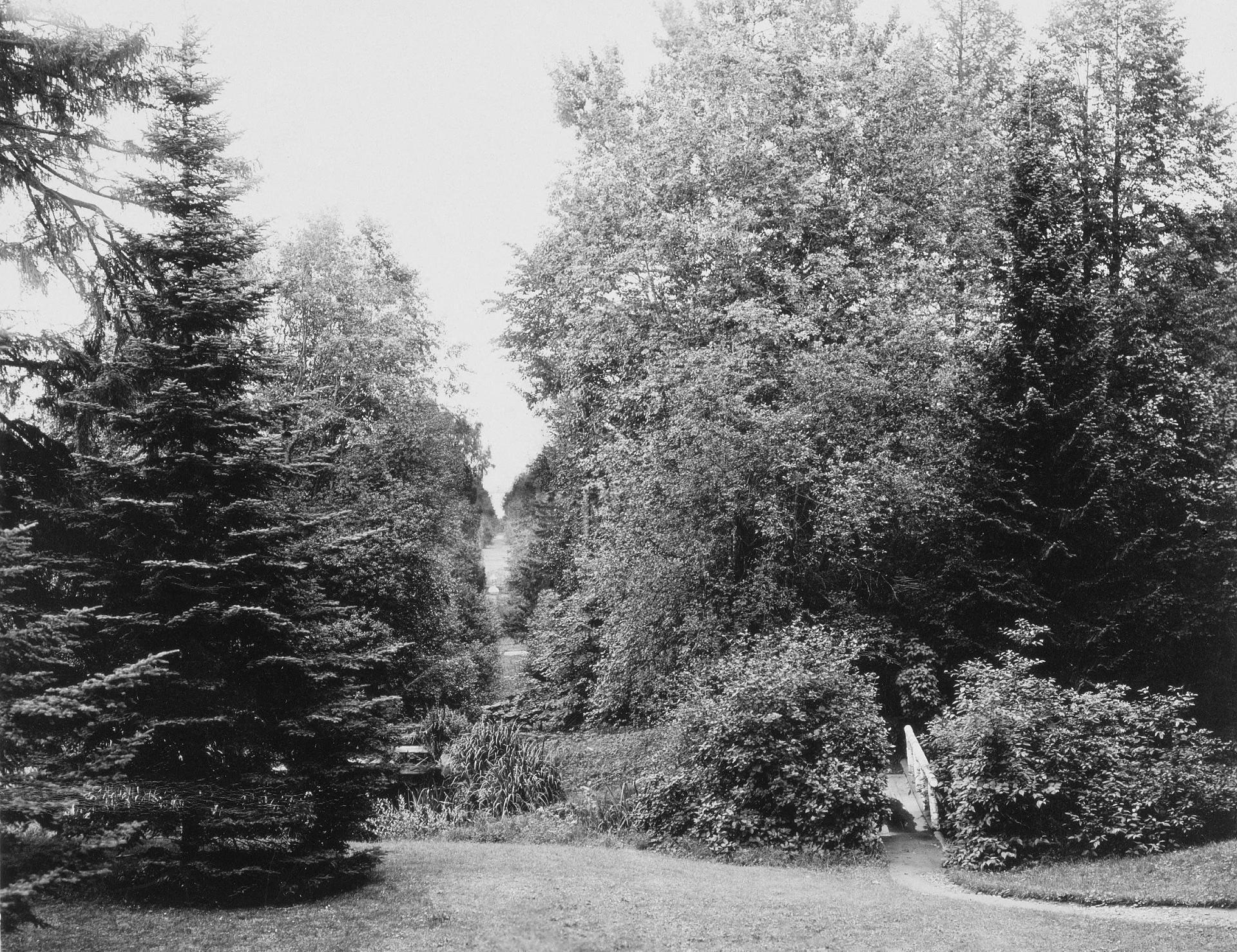 Парк в усадьбе Михайловка
