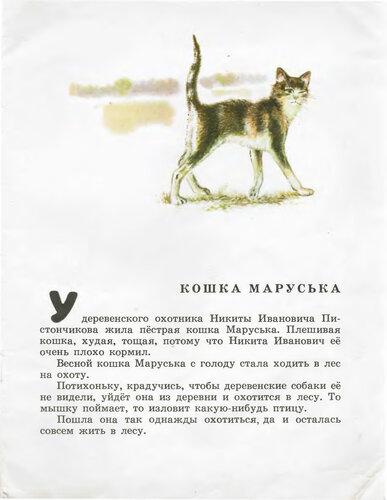 Чарушин е и иллюстрации к книге кто как живет
