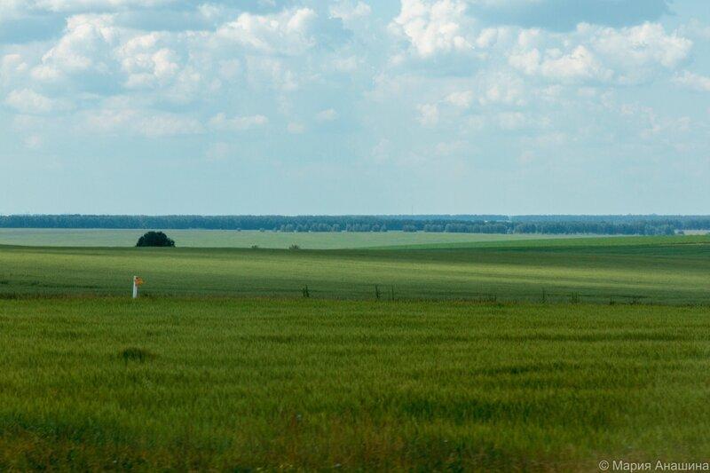 Лесостепь, Рязанская область