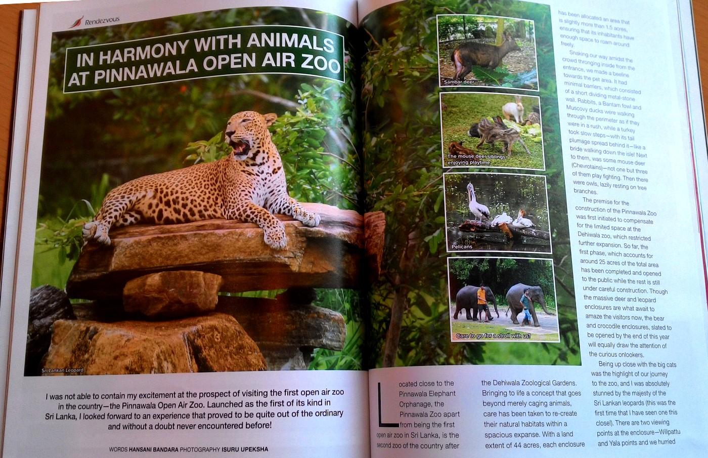 """Около питомника слонов Пиннавела открылся зоопарк """"Open Air National Zoological Gardens at Pinnawala"""". Составляем маршрут путешествия по Шри-Ланке."""