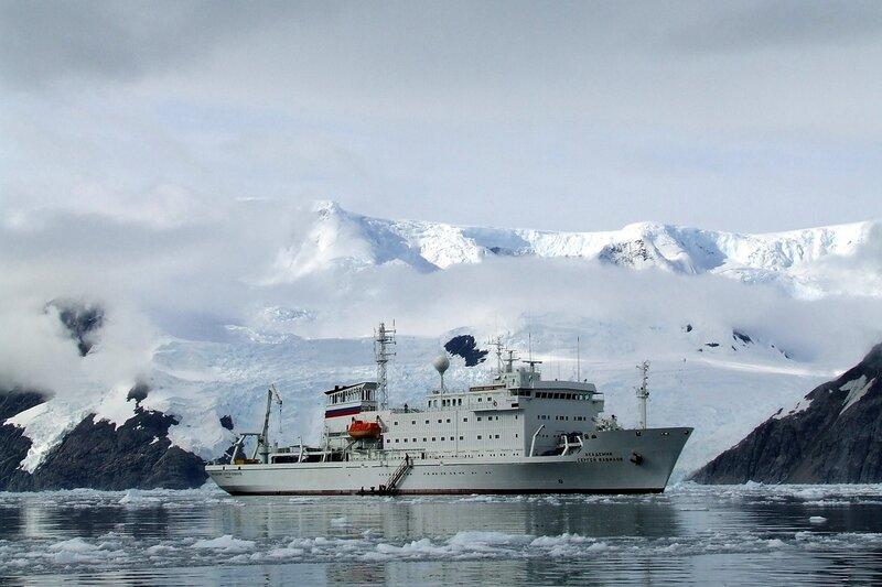 в Антарктике