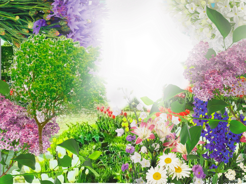 http://img-fotki.yandex.ru/get/4700/97761520.4b5/0_8f255_65c5adfa_orig.png