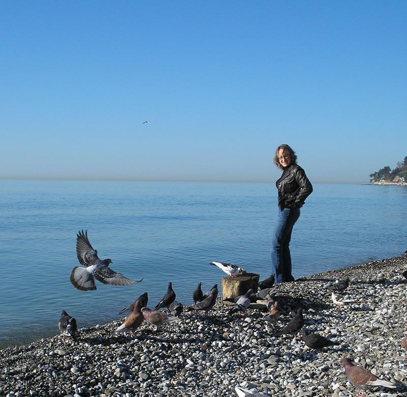 море голуби