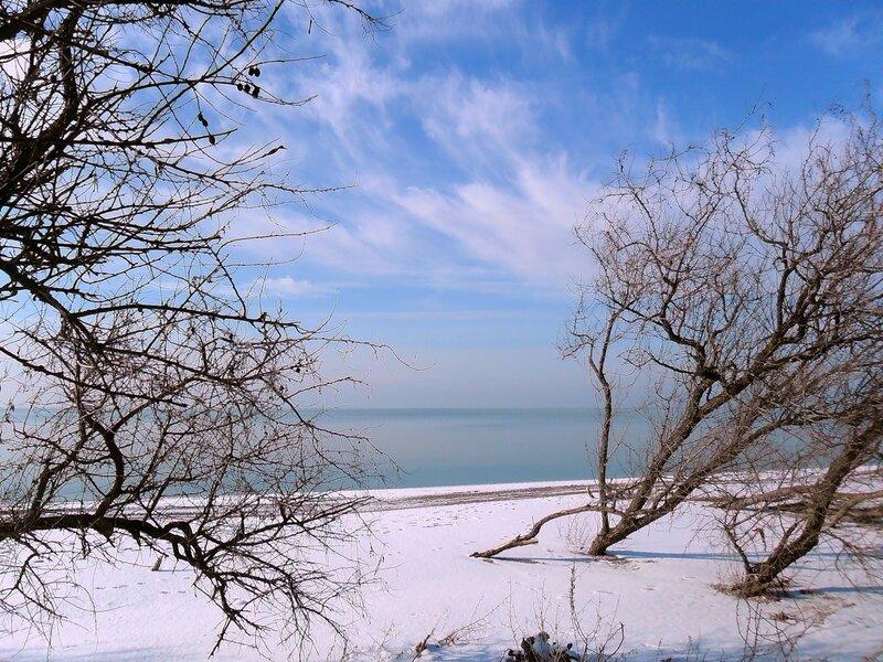 Чистая Природа в канун Старого Нового года