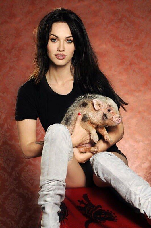 Меган Фокс со своей вьетнамской вислобрюхой свиньей Пигги Смоллс