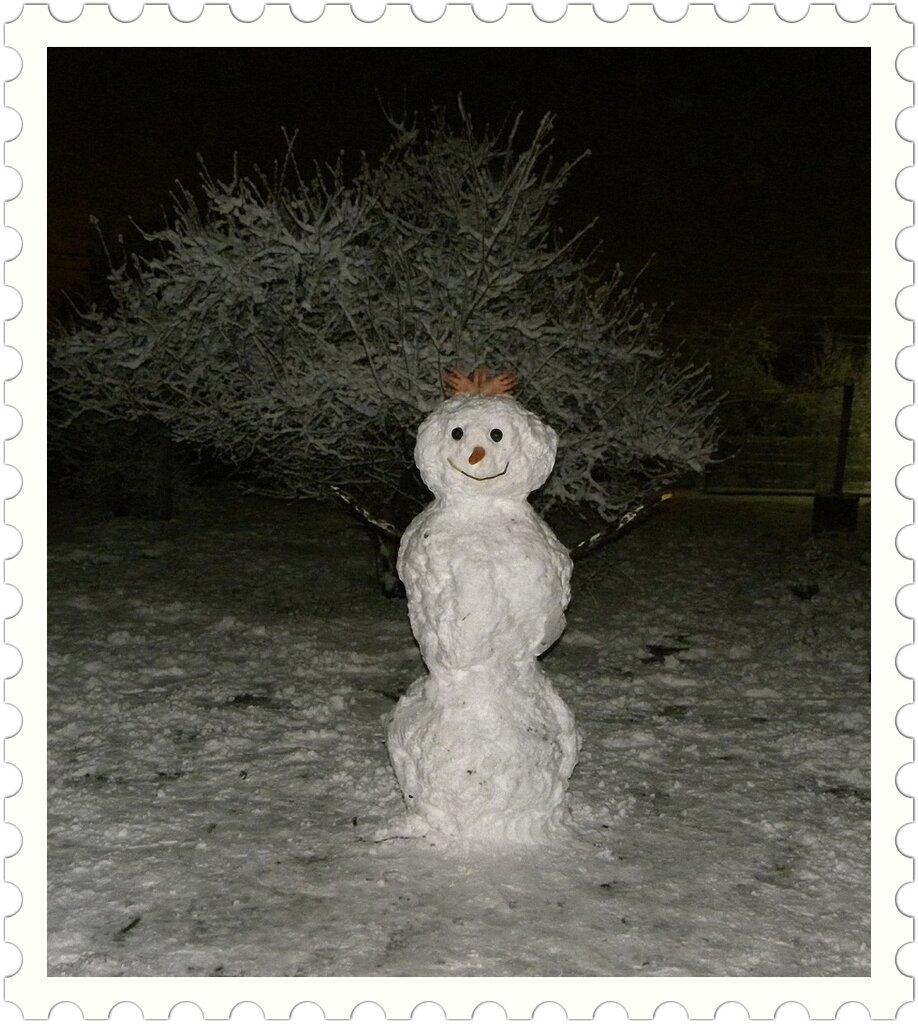 Снеговик 2012