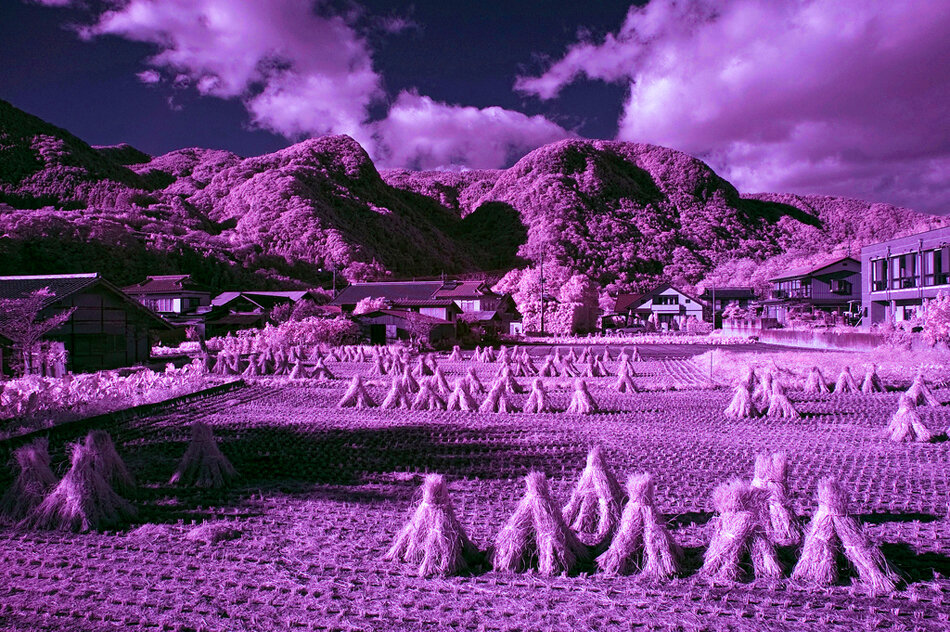 Infrared Photo. Потрясающие фото
